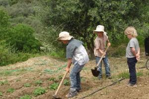melivaro-activities10