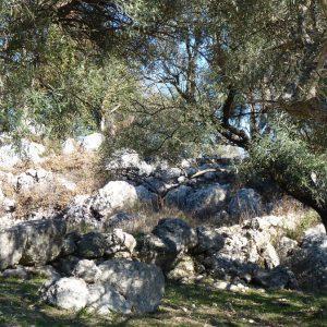 180112-walk-nr-17-ligia-katouna-waterfall-episkopos-ligia-12-km-3